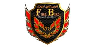 Dubai: Fire Bird Rent A Car